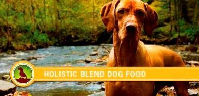 Корм Holistic Blend для собак